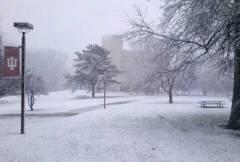 IU SNOW!